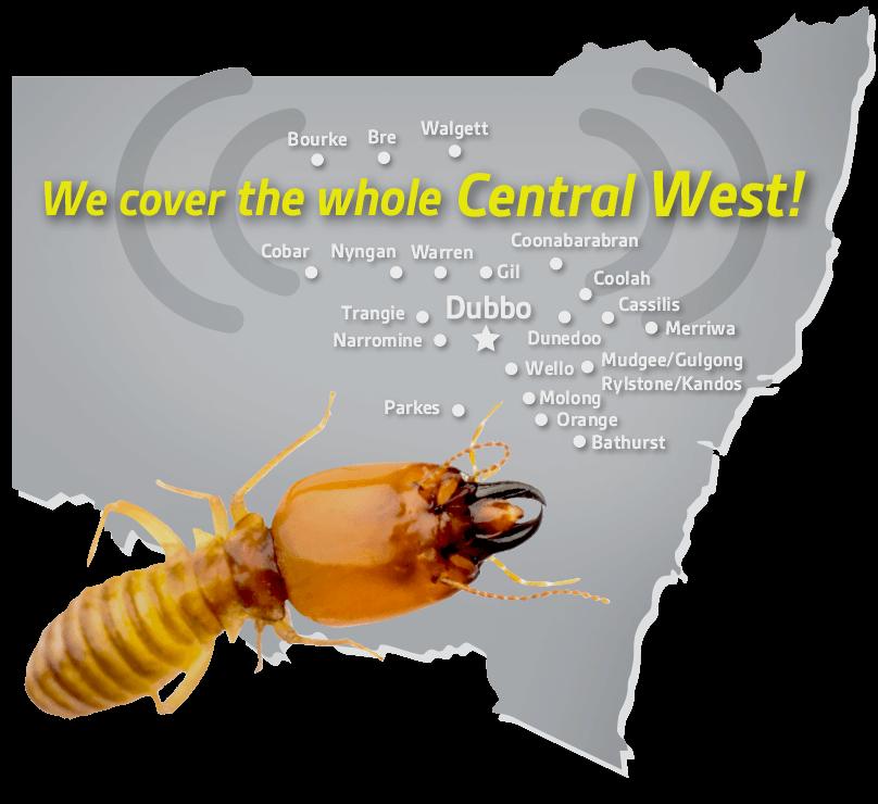 Pest Alert Central West Newcastle Dubbo Pest Control Termites