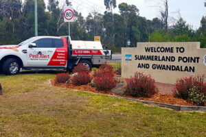 Summerland Point & Gwandalan Pest Control, NSW