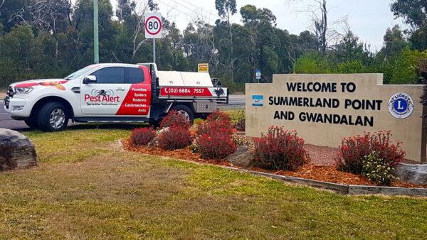 Summerland Point & Gwandalan Pest Control, NSW
