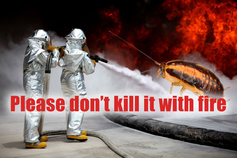 Firefighters putting out cockroach fire